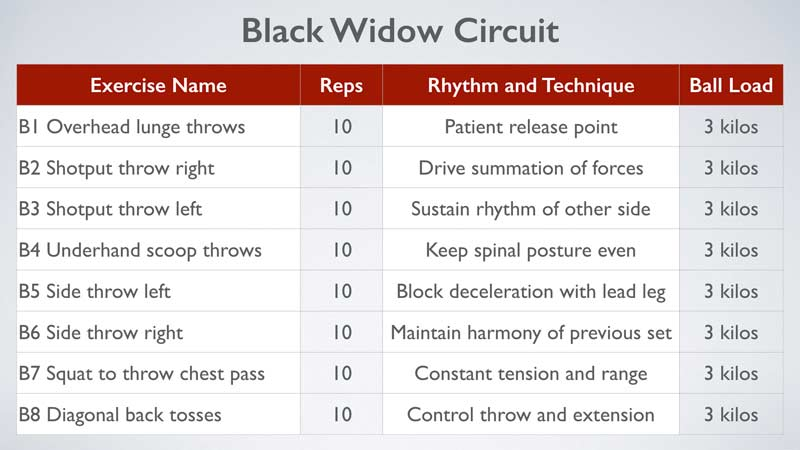 Black Widow Circuit