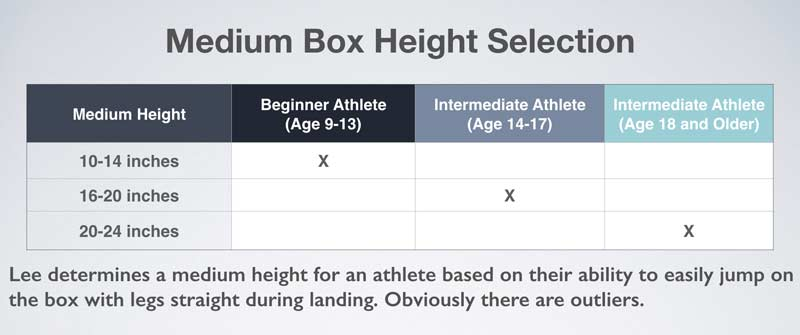 Medium Box Height